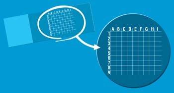 Microscope Grid Slides, White Imprint, 81 Squares/slide 72 Slides Per Package from RPI, Corp.