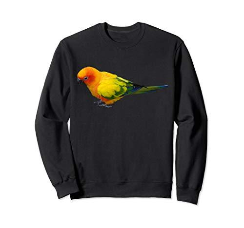 Cute Sun Conure Parakeet Parrot Gift Sweatshirt