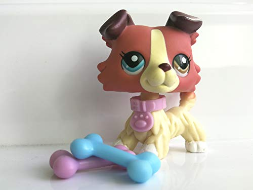 Hot Toy LPS Collie Red Dog Different Eyes Puppy 1262 with Accessories Collection Toys Figure Rare Girls Boys Gift 1 - Art Dog Rare