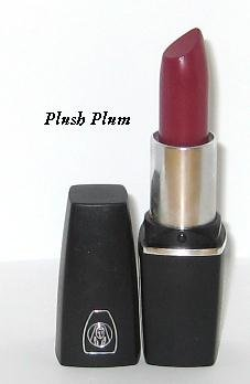 Oil of Olay ColorMoist Lipstick / SPF 15 ~ #560 Plush Plum