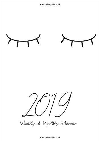 2019 Weekly & Monthly Planner: Calendar Agenda Organizer ...