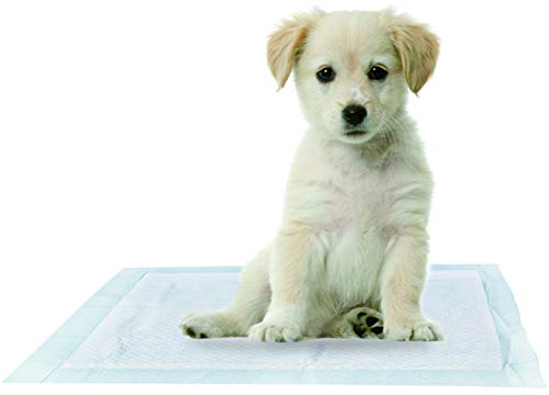 - QualityCare Premium Disposable Puppy Training Pads with Pet Attractant - 50 Count (1 Pack of 50 Pet Training Pads), 24x24 inch Medium Size Sheets