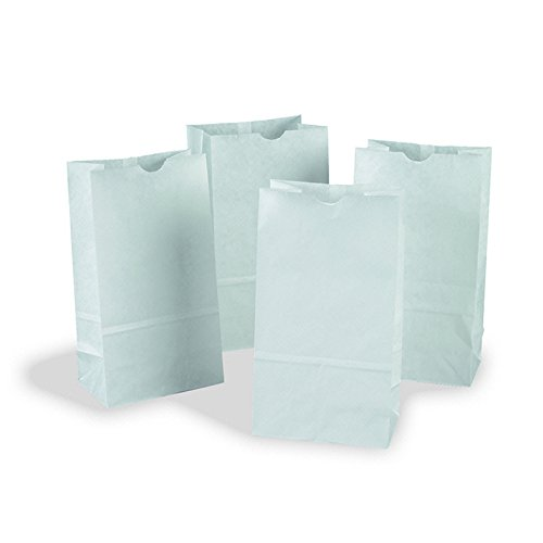 PACON CORPORATION RAINBOW BAGS 100 WHITE 6X11 (Set of 3)