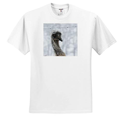 - Stamp City - Birds - Photograph of an emu Wondering What The Heck All The White Stuff is. - T-Shirts - White Infant Lap-Shoulder Tee (18M) (ts_291288_68)
