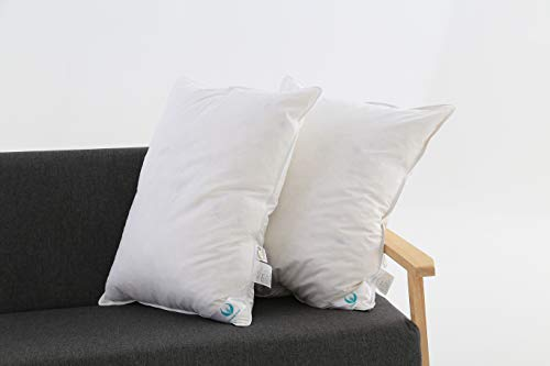 Set of 2,White Goose Down and Feather Bed Pillow Insert Willow,100% Organic Cotton Cover, Anti-Allergy,Hypoallergenic,Medium Firm and Soft Support,20x26inches ()