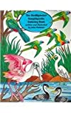 The BirdAlphabet Encyclopedia Coloring Book, Julia Pinkham, 0880451378