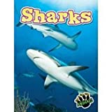Sharks, Don McLeese, 1618102486