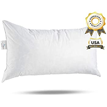 Amazon 40x40 Inch Rectangular Throw Pillow Insert Form Home Magnificent Lumbar Pillow Inserts 14 X 22