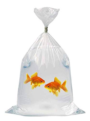 - APQ Pack of 100 Plastic Fish Bags 6 x 12. Clear Polyethylene Bags 6x12. FDA, USDA Approved, 2 mil. Fish Transport Bags for Storing and Transporting. Ideal for Industrial, Healthcare, Food Service.