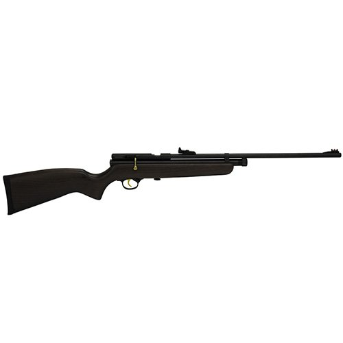 Beeman QB78D-22 Air Guns Rifles (Best C02 Air Rifle)