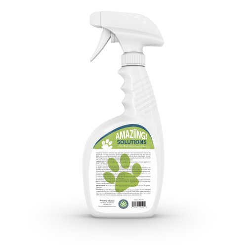 best cat odor remover reviews