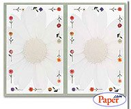Masterpiece Daisies 2-up Invitation - 8 Sheets & 16 Envelopes ()