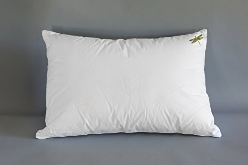 Dreampad Advanced Music Pillow, Sound You Can Feel, Firm Support