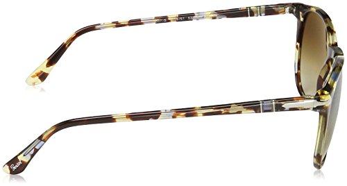 Havana brown Persol Marron Azure Cleargradientbrown PO3007S Sonnenbrille zqwHtw4X