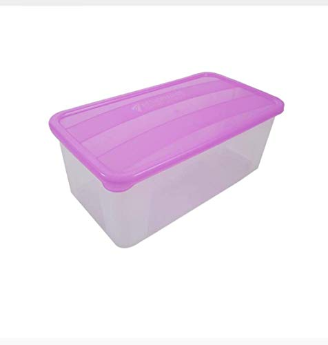 KHODAL IMPEX Bread and Butter Box/Smart Storage for Fridge (Pack Of 6)