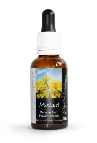 Mustard Bach Flower Remedy Large 30ml. Genuine Traditionally Made Essence ()