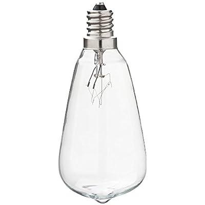 Litex Indoor/Outdoor Clear Incandescent Edison String Light Bulbs