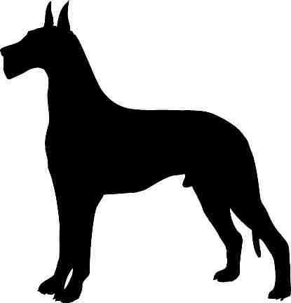 - GREAT DANE SILHOUETTE CAR DECAL STICKER, Black, 12 In, Die Cut Vinyl Decal, For Windows, Cars, Trucks, Toolbox, Laptops, Macbook-virtually Any Hard Smooth Surface