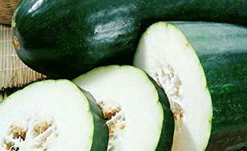 GEOPONICS 16 orgánicos de la Herencia de semilla Blanca Weet ...