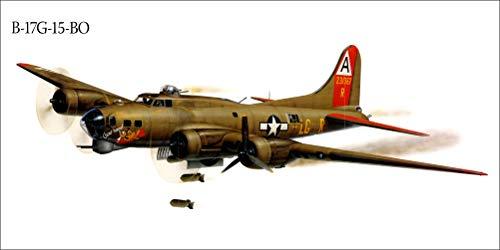 Innerwallz Airplane Painting Art Bomber B-17G-15-BO Wall Art, Pop Art, Poster, Art Prints   Rare Posters