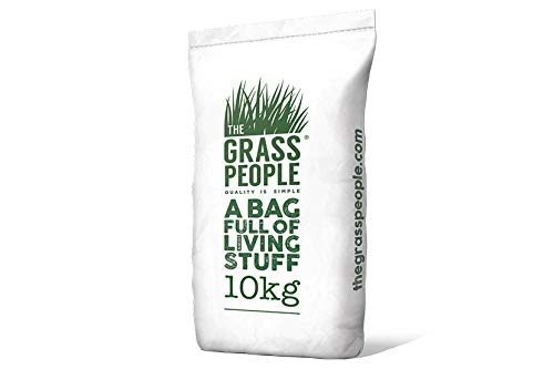 Superstar Back Lawn Grass Seed 10KG from The Grass People - Perfect for...