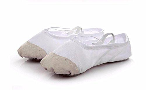 SQIAO-X- Scarpe da ballo, Pratica scarpe fondo morbido del gatto di scarpe di zampa di uomini e donne adulti di bambino Scarpe da ballo ,40, bianco