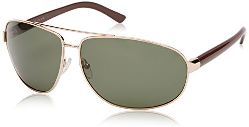 Gold Lunettes Brown Homme Pilote Or Sunoptic PqY6x