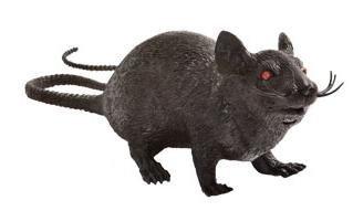 Graveyard Black Plastic Halloween Squeaking Rat (Sitting Rat)