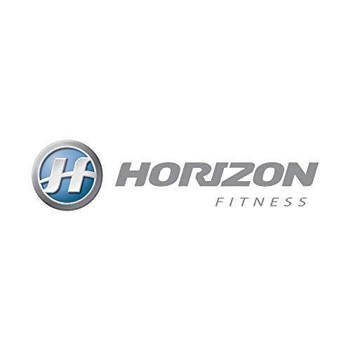 Horizon dt650 walking belt