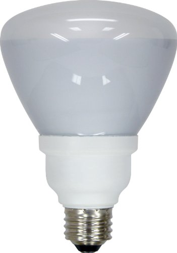 Floodlight Compact Fluorescent Light Bulb - GE Lighting 20708 Energy Smart CFL 16-Watt (65-watt replacement) 750-Lumen R30 Floodlight Bulb with Medium Base, 1-Pack