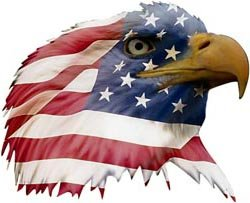 (Patriotic Eagle Head Decal Facing Right - 3