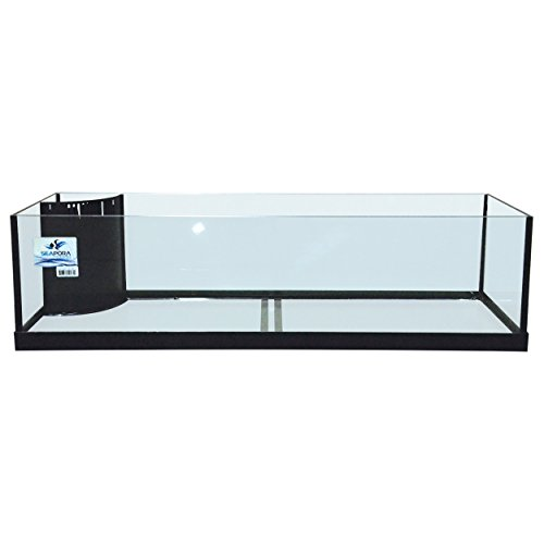 45 gallon fish tank - 9