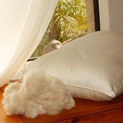 Pure Rest - Kapok Medium Fill Pillow with Organic Outer Vegan Queen