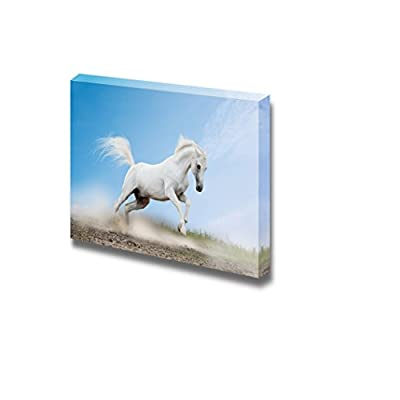 Canvas Prints Wall Art - White Arabian Horse Running/Galloping | Modern Wall Decor/Home Art Stretched Gallery Canvas Wraps Giclee Print & Ready to Hang - 16
