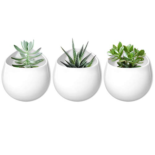 Mkono 4 Inch Wall Mounted Planter Round Ceramic Hanging Plant Holder Decorative Flower Display Vase Succulent Pots for Indoor Plants, Set of 3, White