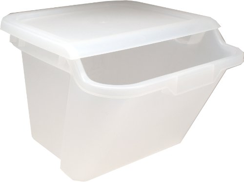 IRIS Quart Recycle Storage Clear