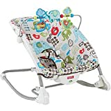 Fisher-Price Deluxe Infant to Toddler Rocker, Multi
