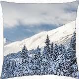 RAINBOW FALLS - Throw Pillow Cover Case (18