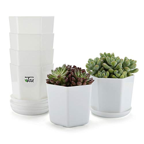 T4U 3.75 Inch Plastic Pot with Saucer White Set of 6, Hexagon Resin Planter Garden Plant Container Indoor Outdoor for Orchid Herb Flower Succulent Cactus Home Office Balcony Decor Christmas Gift