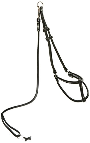 Dogline Soft Round/Rolled Genuine Leather Step-In Harness with 15 to 20-Inch Chest and 3-Foot Leash, Black