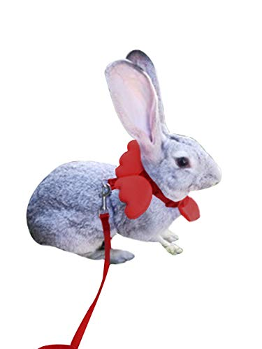 e Rabbit Harness and Leash Set-Angel Wing (Red) ()