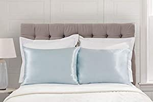 Baby Blue 1 per Pack Satin Euro Pillow Case Zippered Shop Bedding Luxury Satin Pillowcase for Hair Blissford