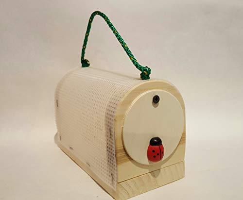 Bug Box -