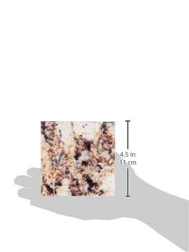3dRose cst/_97952/_4 Giallo Napoleon Granite Print-Ceramic Tile Coasters Set of 8