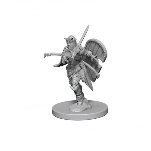Pathfinder: Deep Cuts Unpainted Miniatures: Human Female Paladin by (Paladin Miniatures)