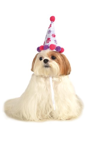 Rubies Costume Halloween Classics Collection Pet Costume, Medium to Large, Purple and Red Paw Print Birthday Hat