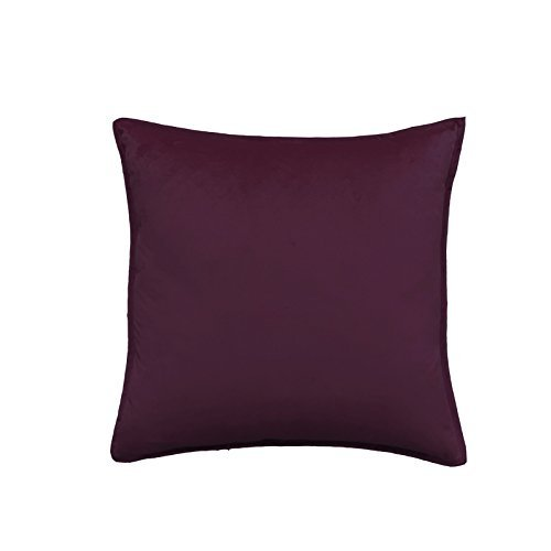 HOMEE Pure Color Velvet Pillow Cushion Sofa Cushion Large Bed Pillow Back Pad,Grape-Colored,50X50 by HOMEE