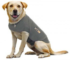 Thundershirt Dog Anxiety Treatment