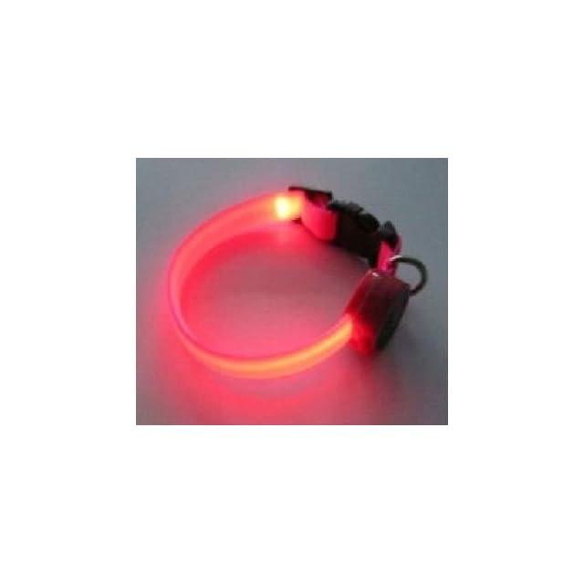 Fashionable Flashing Nylon Dog Collar with Pink LED Lights, Multi Function, Large