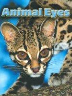 Download Steck-Vaughn Shutterbug Books: Leveled Reader Animal Eyes, Science pdf